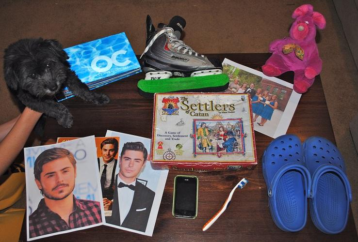 Junior Sarah Nielsen's ten favorite things