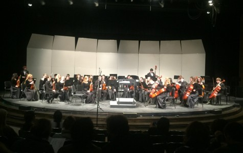 Orchestra Concerto Concert