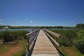 Is Lake Cornelia Toxic?