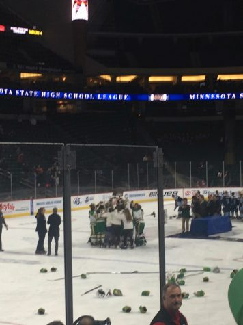 EHS Girls' Hockey Wins State